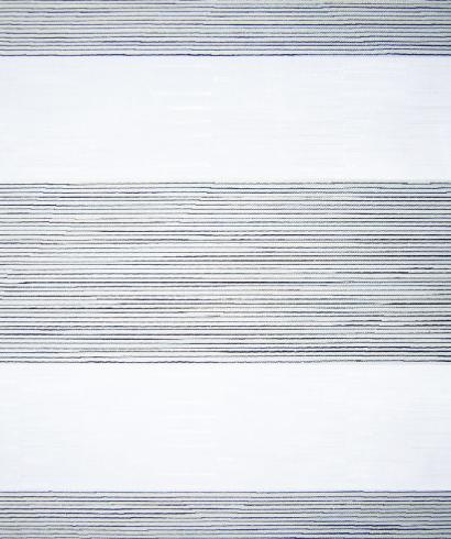 104-Zebra